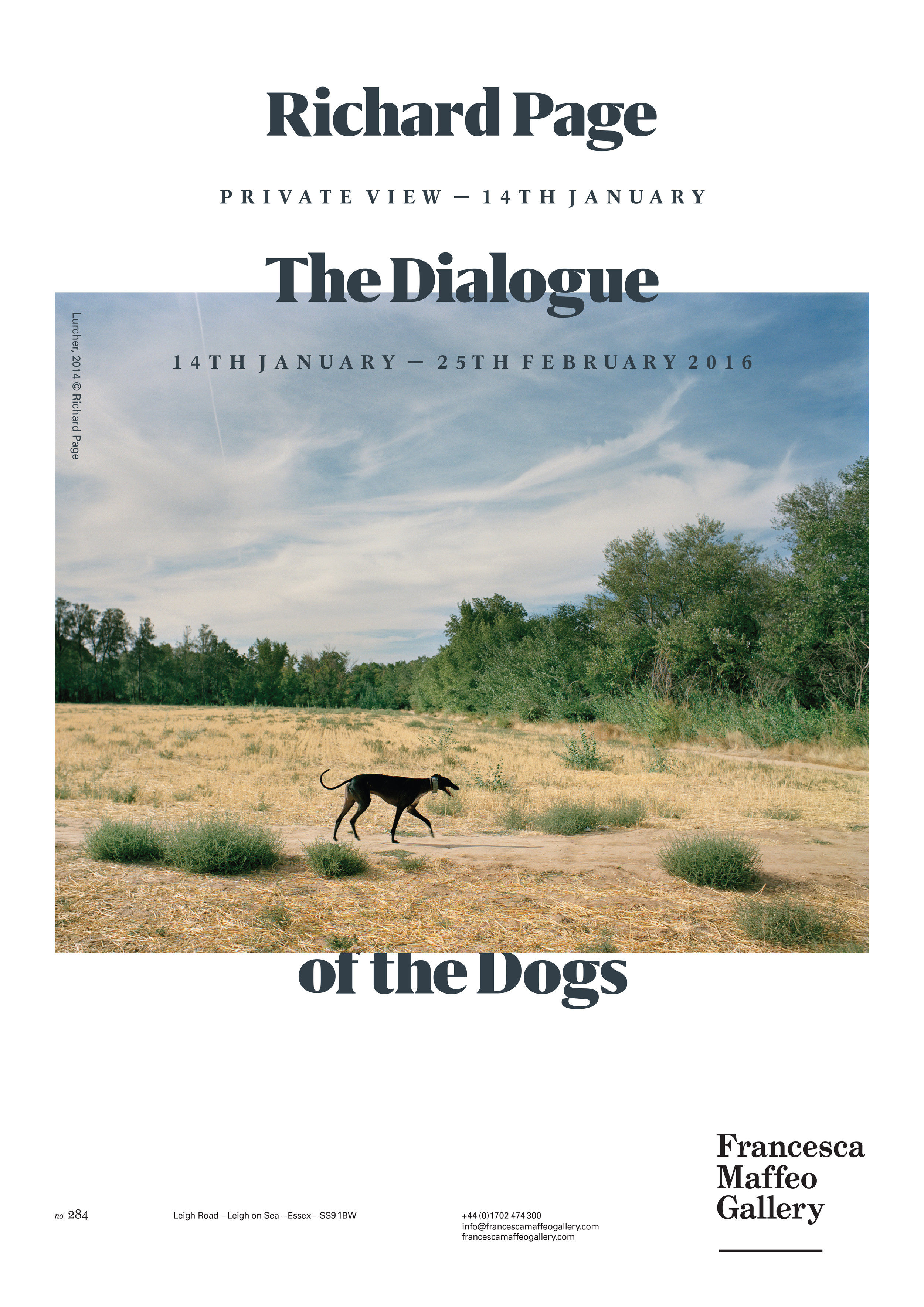 Richard Page | The Dialogue of the Dogs     Press Release      Print Sales