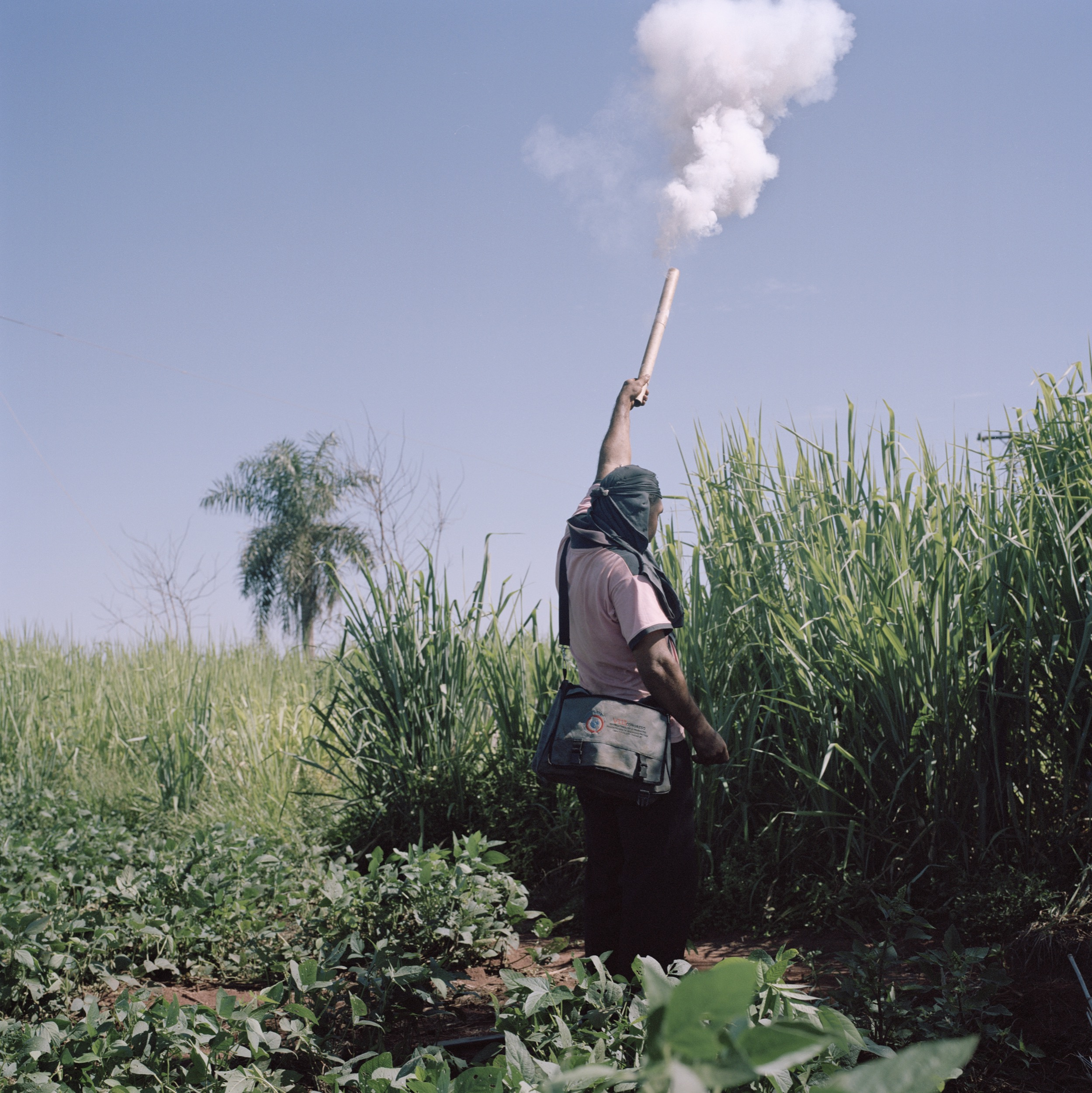 A peasant shots a firecracker to alert the population that a fumigation is happening near the community. Police protected the fumigation and heavily repressed the peasants, leaving several injured.