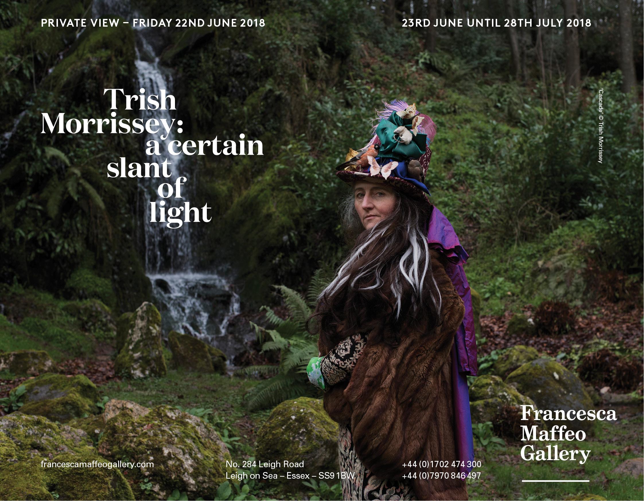 Trish Morrissey : a certain slant of light     Press Release      Print Sales