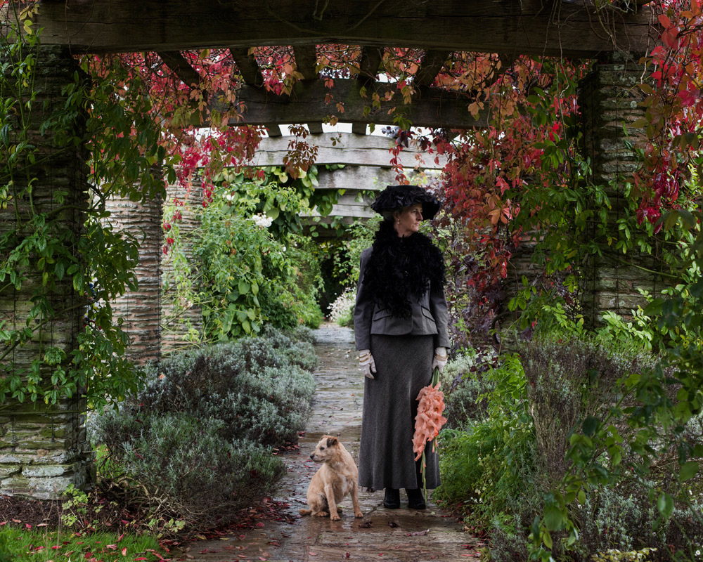 Trish Morrissey: 'A bird came down the walk'