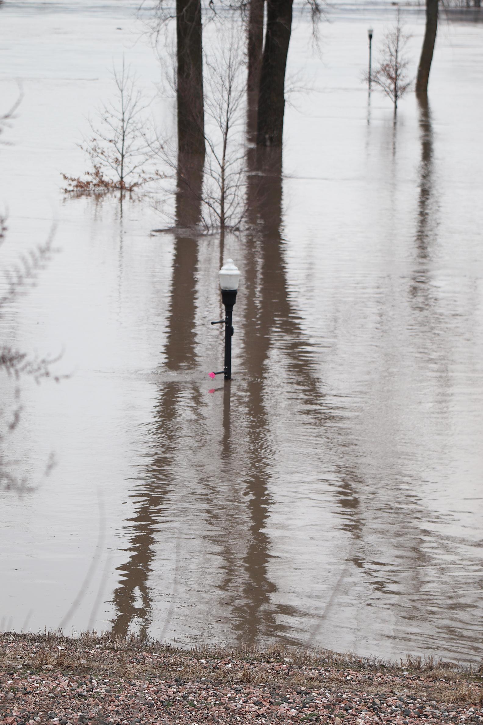 Flood 14.jpg