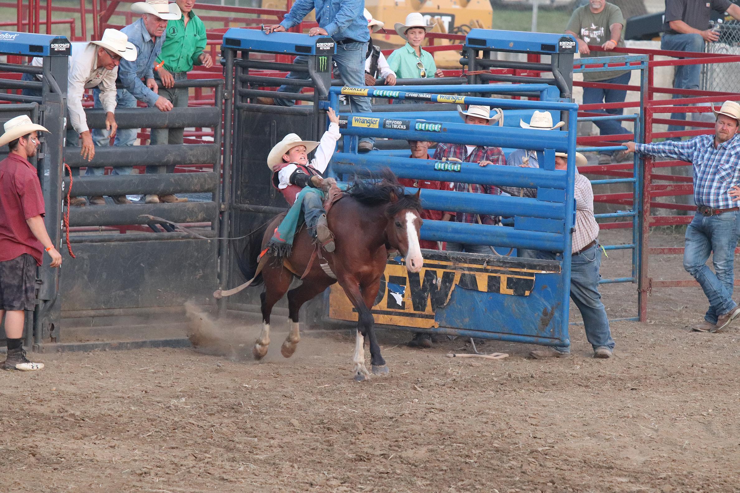 Rodeo 23.jpg