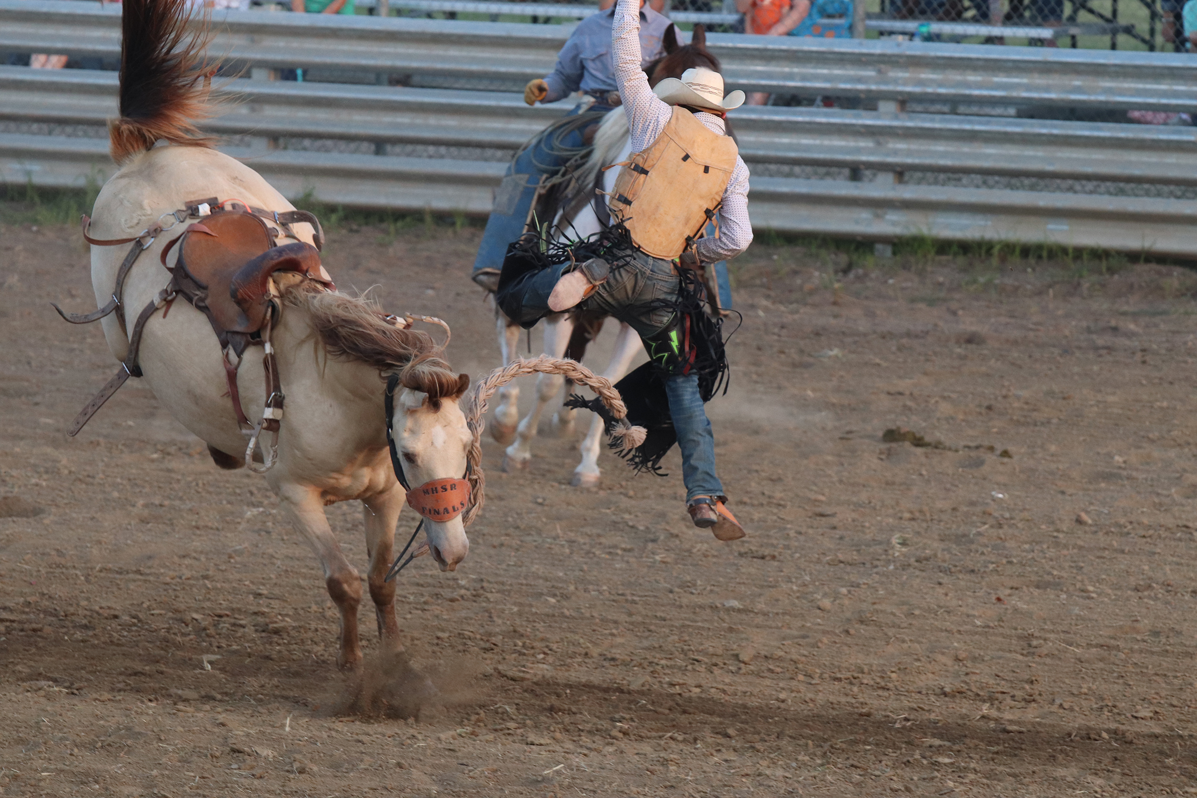 Rodeo 25.jpg