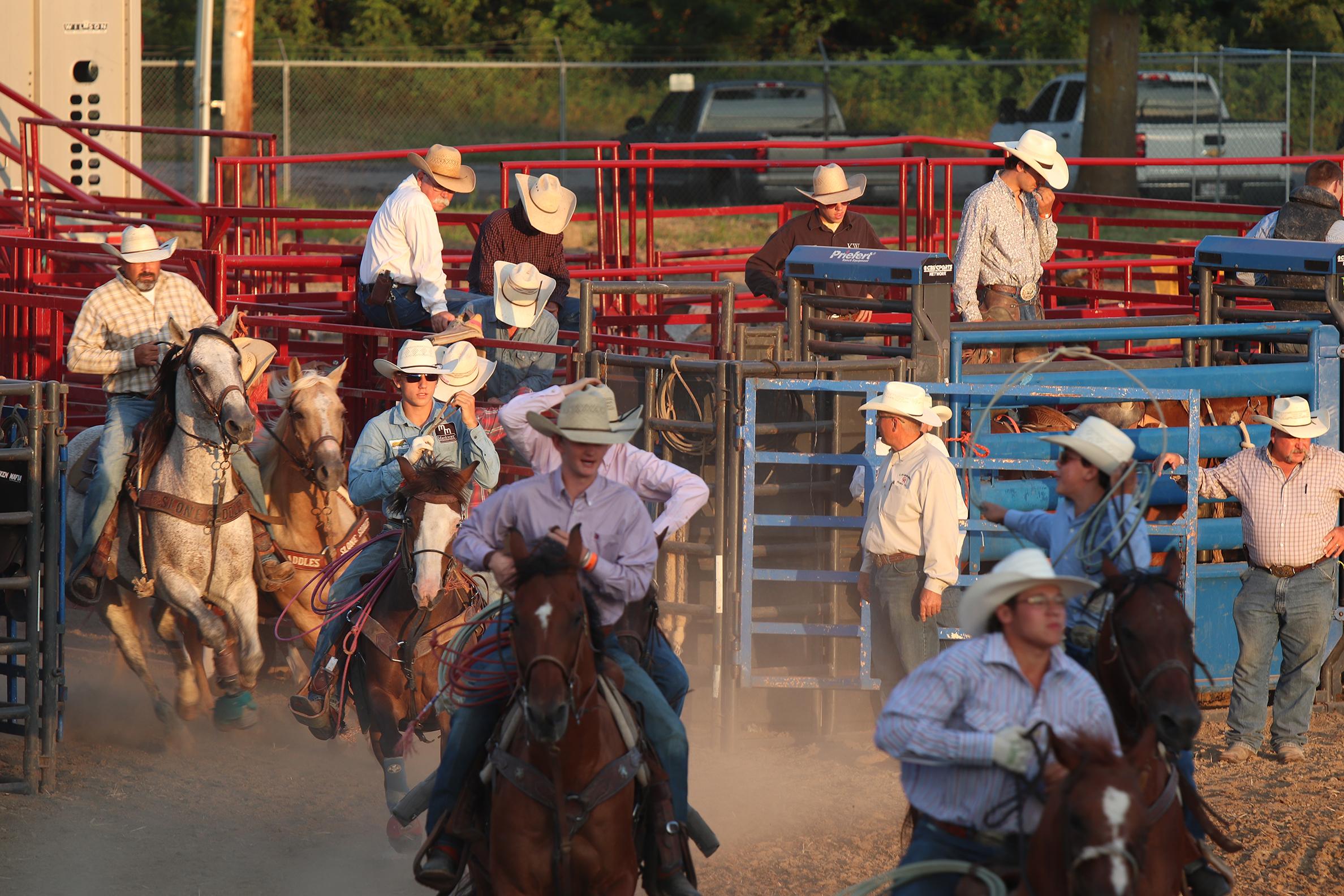 Rodeo 34.jpg