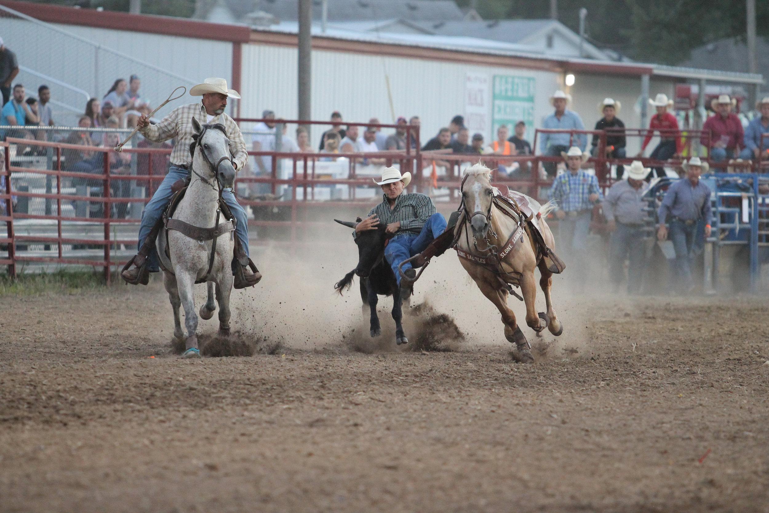 Rodeo 40.jpg
