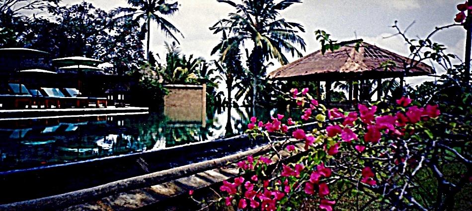 Pool, Ubud, Bali