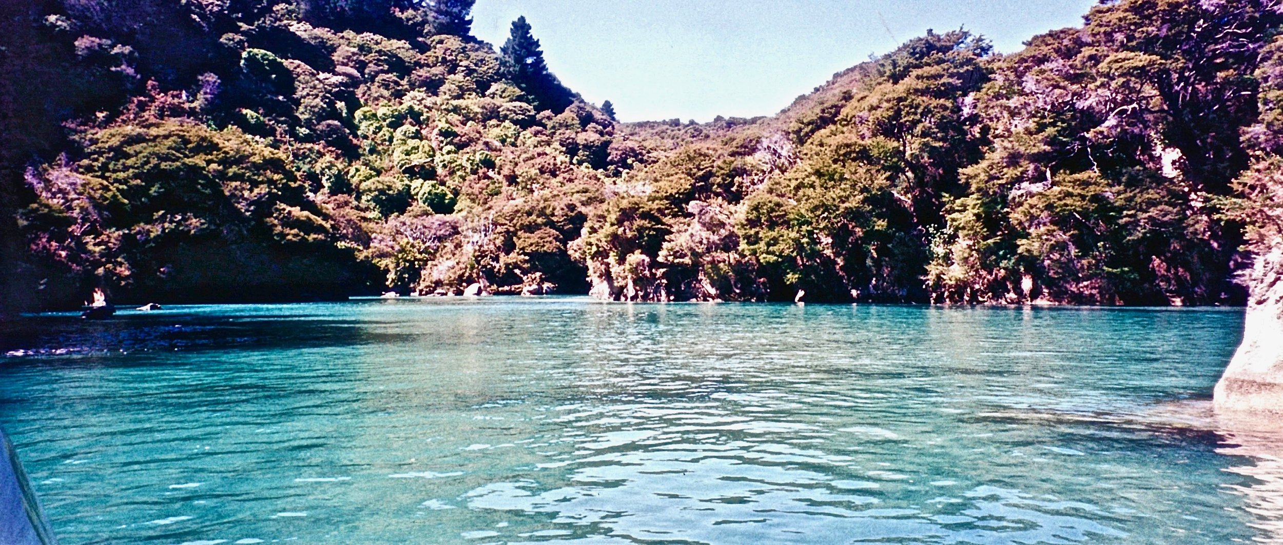 Maori Cove Abel Tasmin National Park, New Zealand