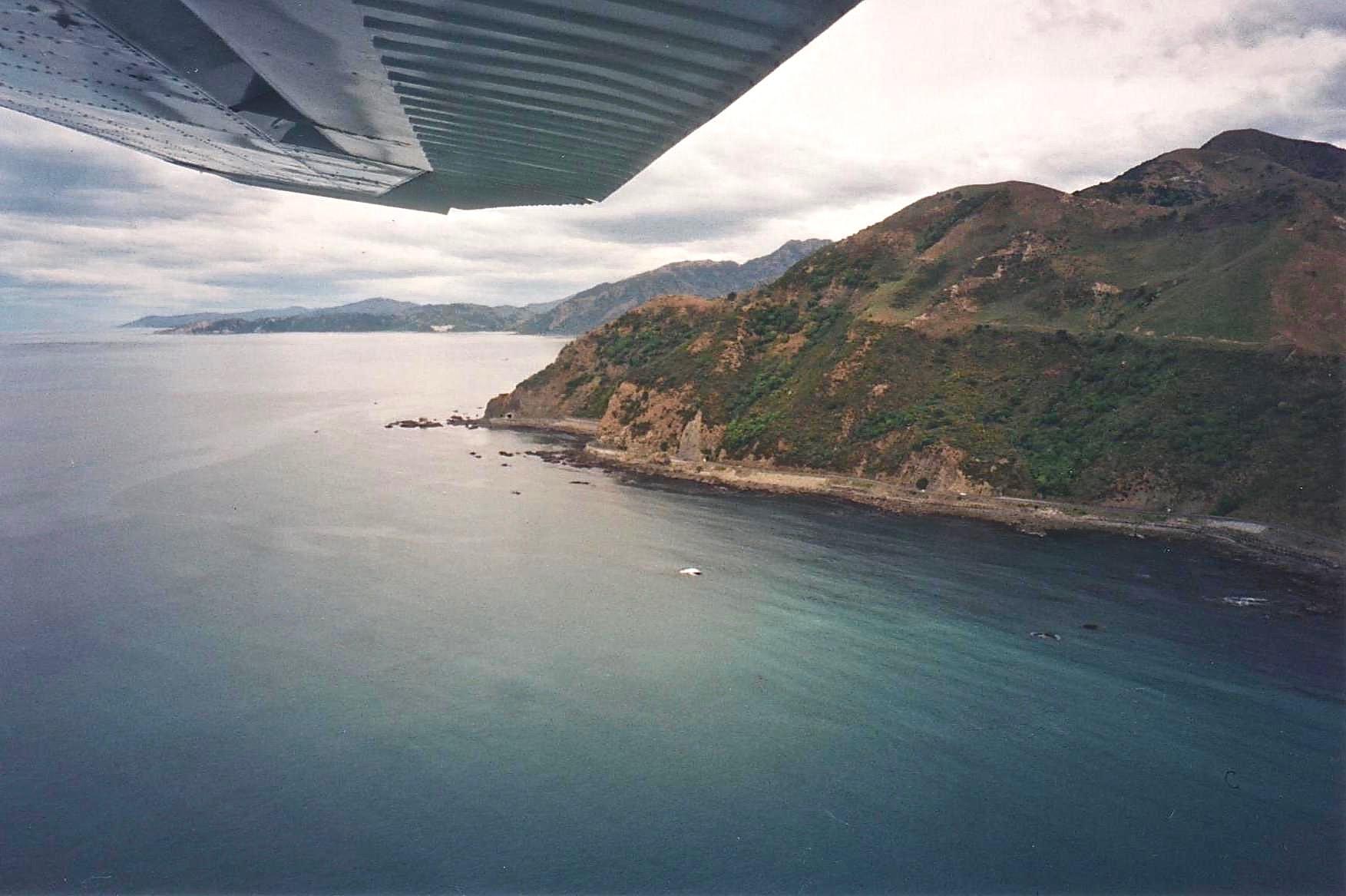 NZ plane whalewatching.jpg