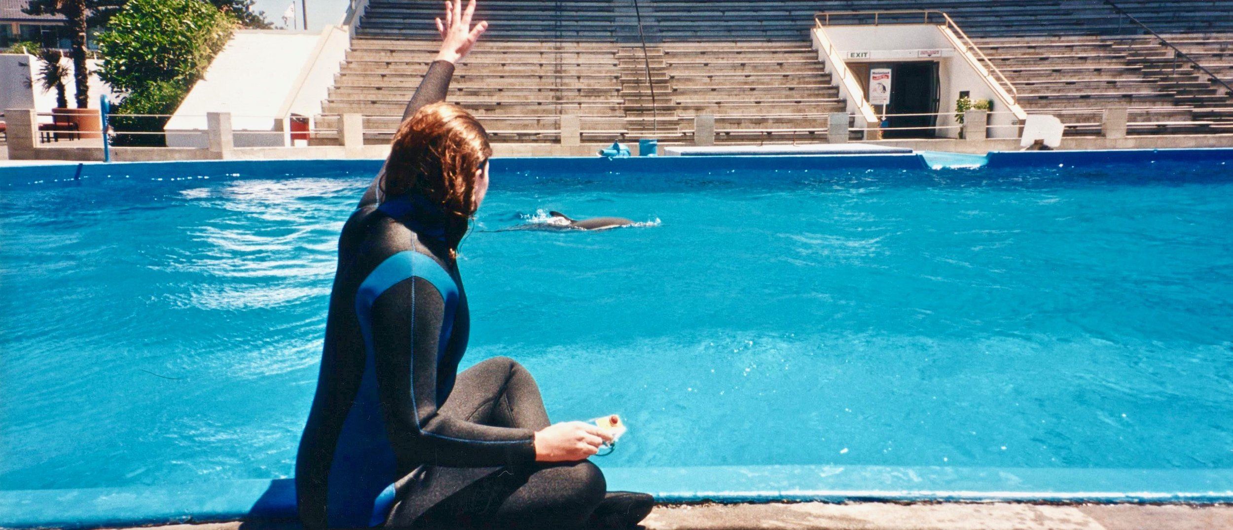 NZ swimming with dolphins Lula waving 2.jpg