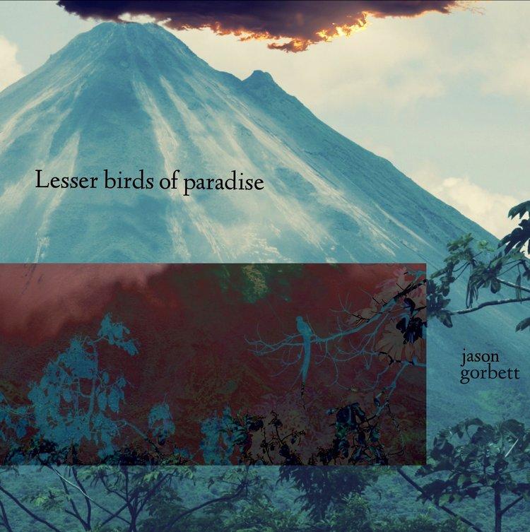 d4aa7180f Lesser Birds of Paradise — Jason Gorbett Orbit Blog<br/>https ...