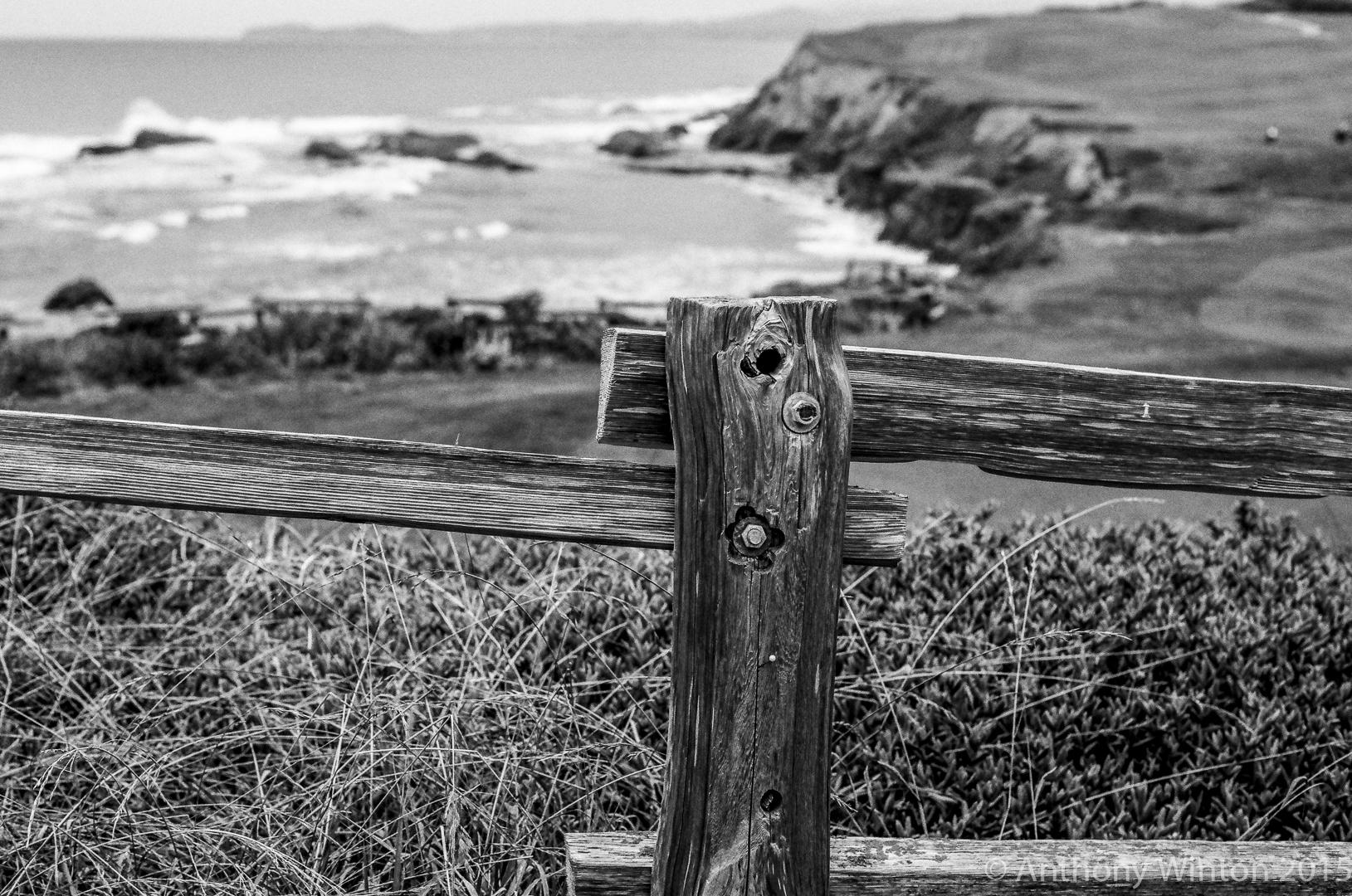 Fence, Half Moon Bay
