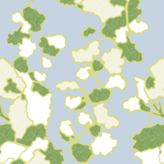 Floral Lines-Cloud and Key Lime