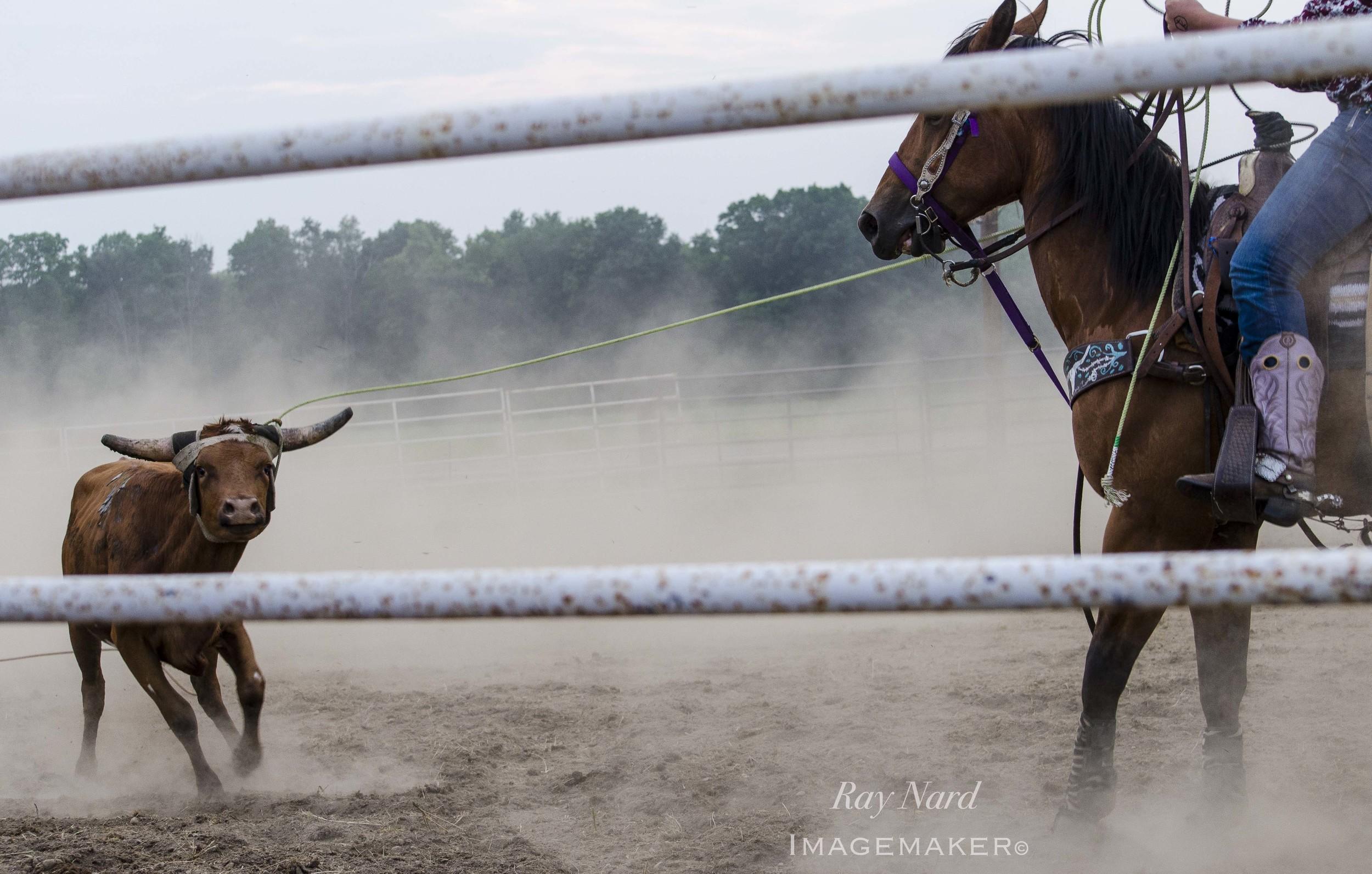 Rodeo Doc_2.JPG