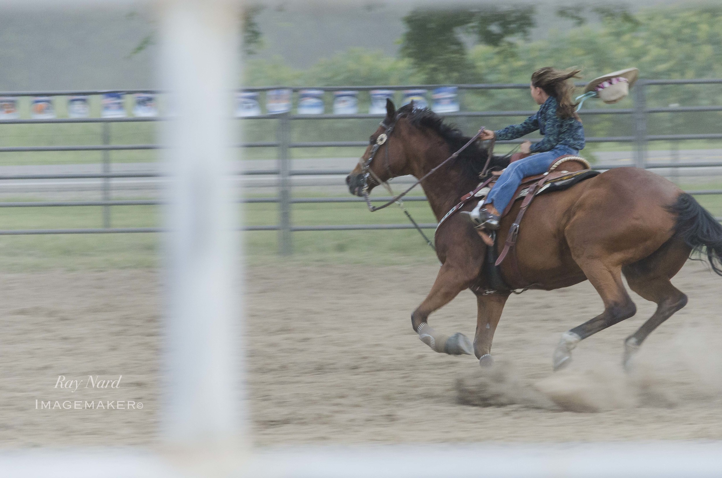 Rodeo Doc_4.JPG