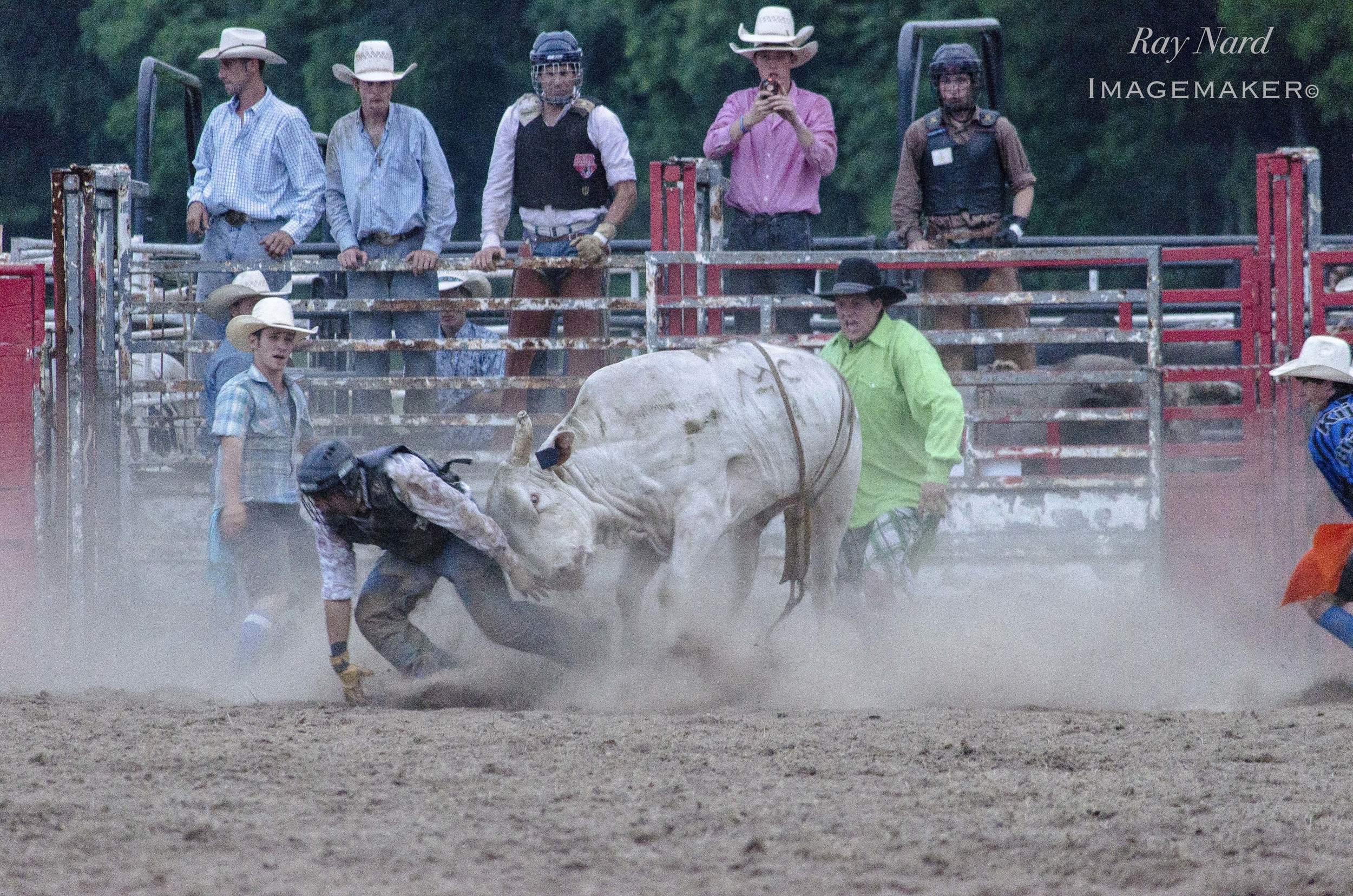 Rodeo Doc_8.JPG
