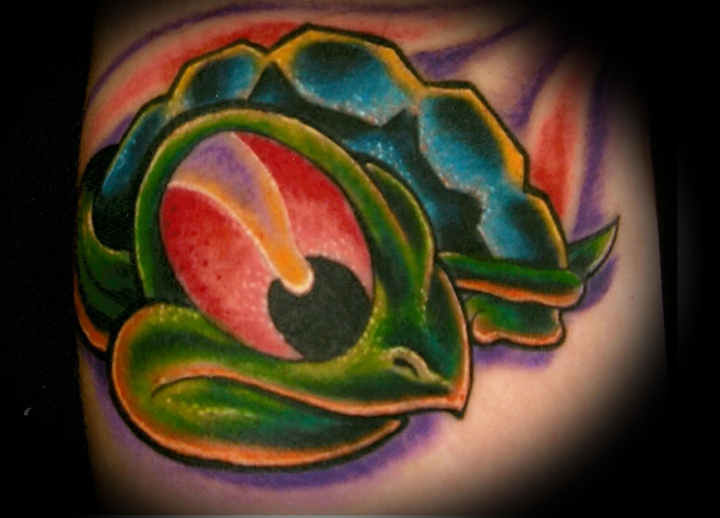 turtle (3).jpg