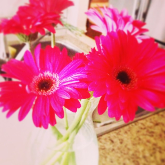 April #showers bring #may #flowers. We took the Sunday off to wish all of our #mothers a happy Mother's Day. Now back to the grind. #happymonday everybody!!!! #toronto #6ix #sixside #igers #torontobloggers #tdot #prettyflowers #the6