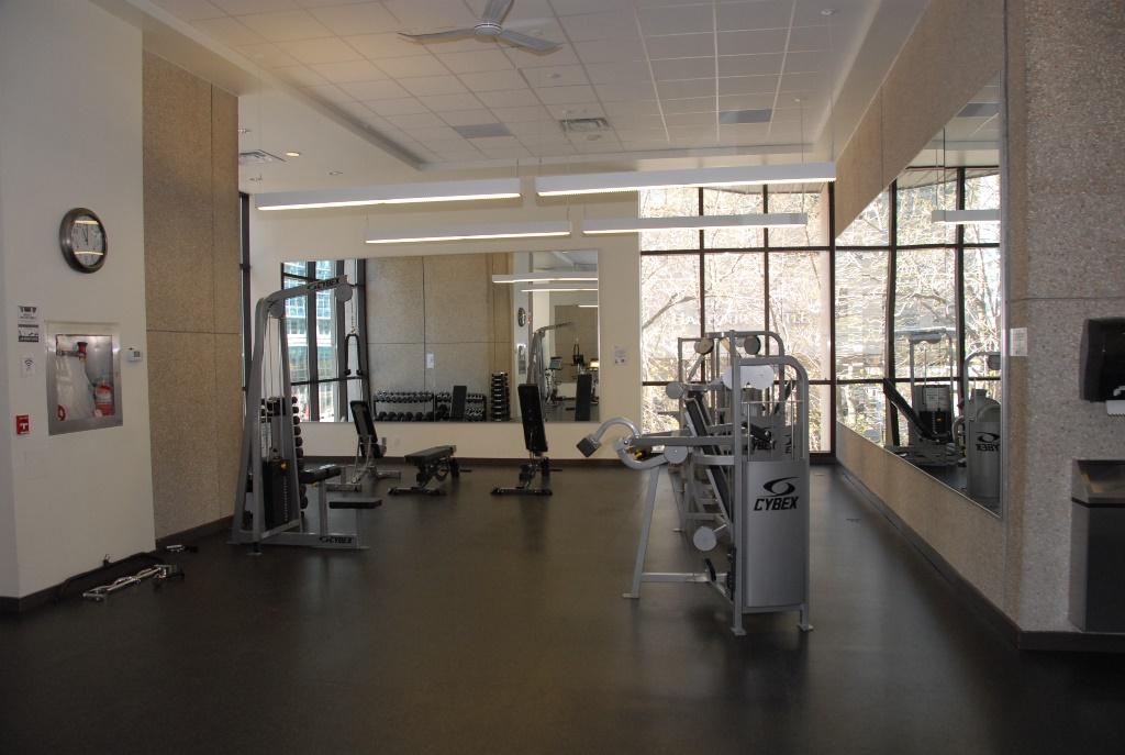 13-Gym-Weights.jpg