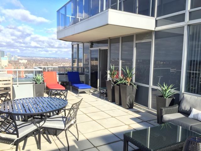 terrace2.jpg
