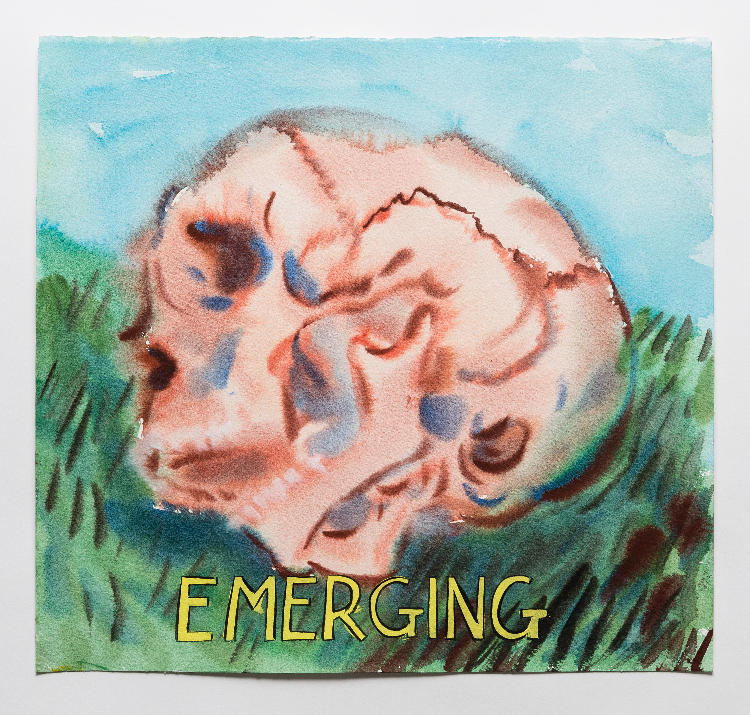 Emerging  2015 watercolor, gouache and ink on paper, 15 x 16""