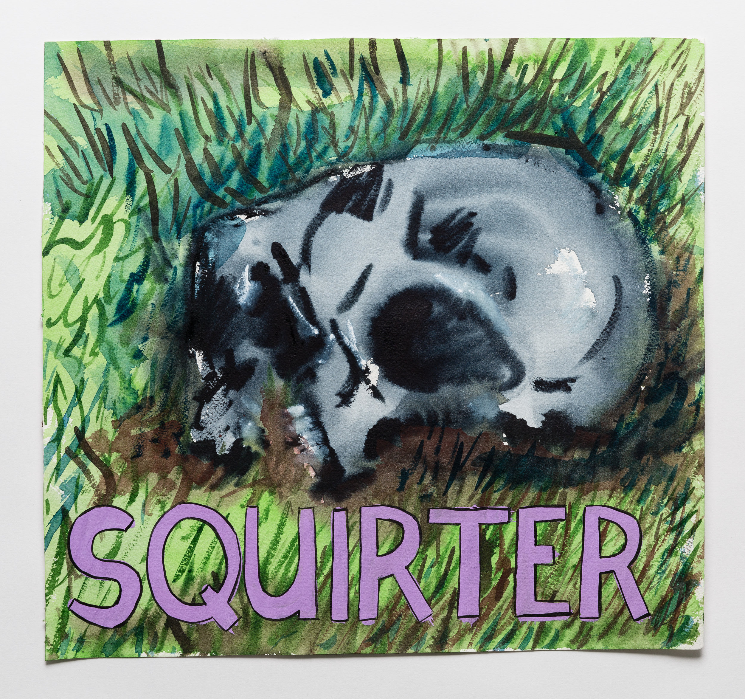 Squirter    2015 watercolor, gouache and ink on paper 15x14""