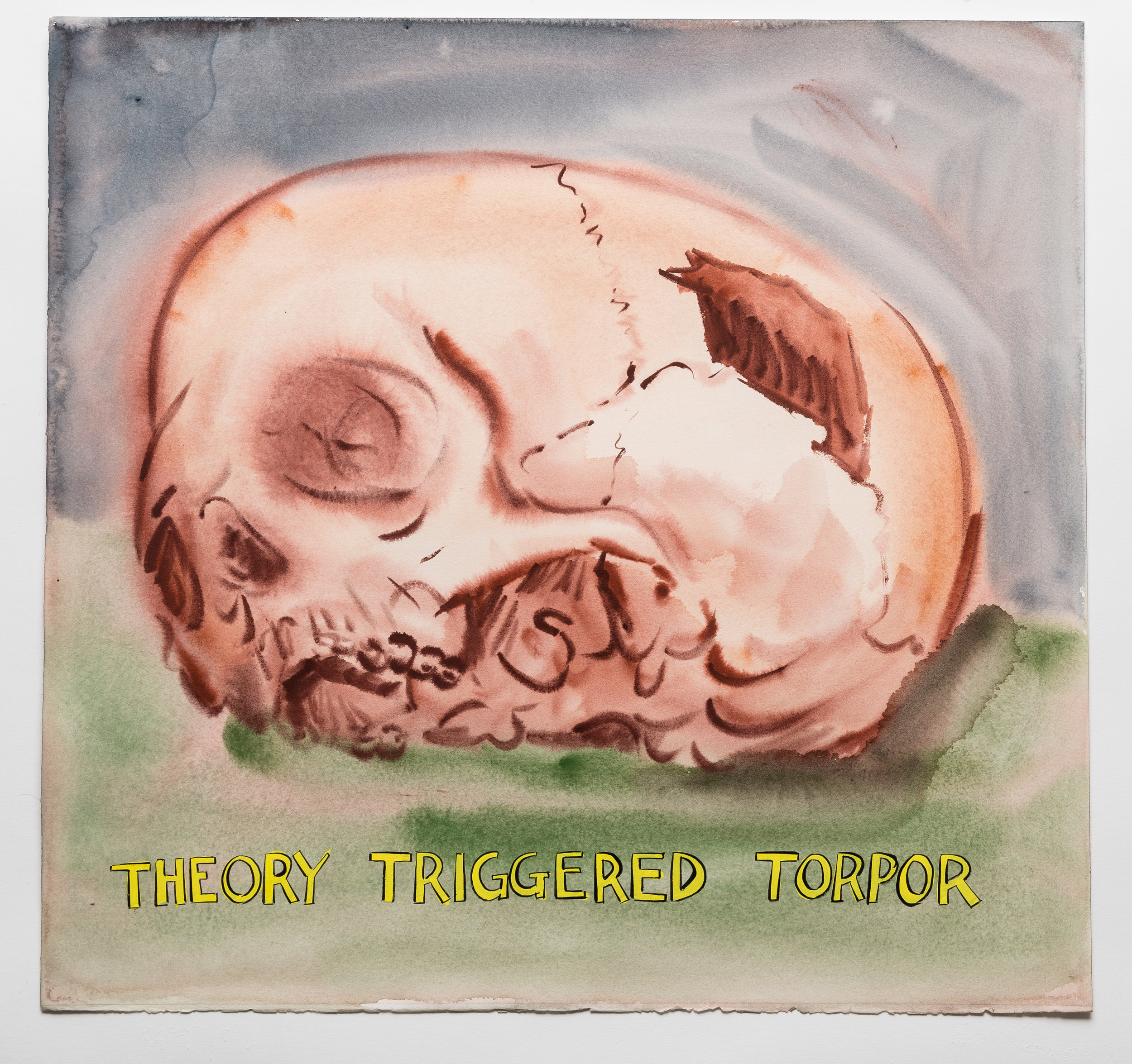 Theory Triggered Torpor   2015 watercolor, gouache and ink on paper 19x21""