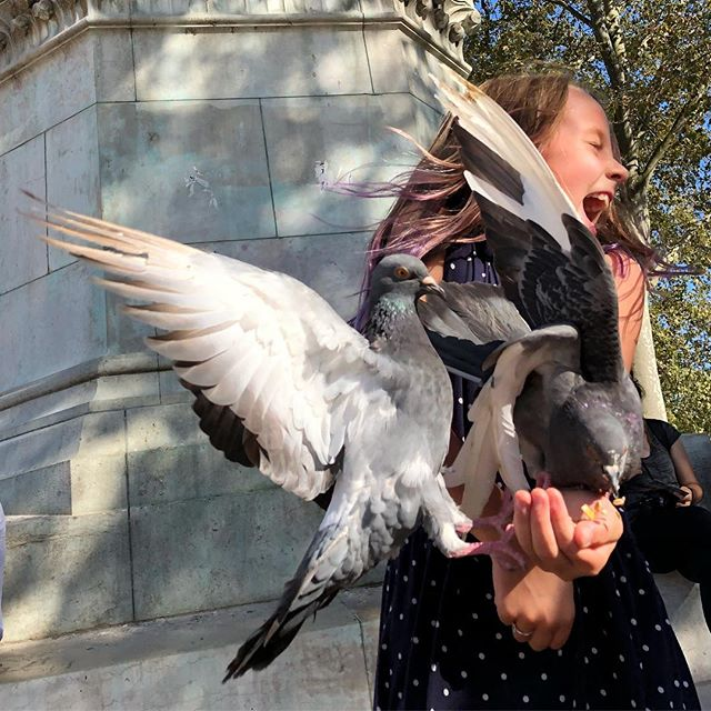 Scarlett feeding the pigeons in front of Notre Dame. #pigeons #notredame #paris #france #lovemydaughter #feedingbirds