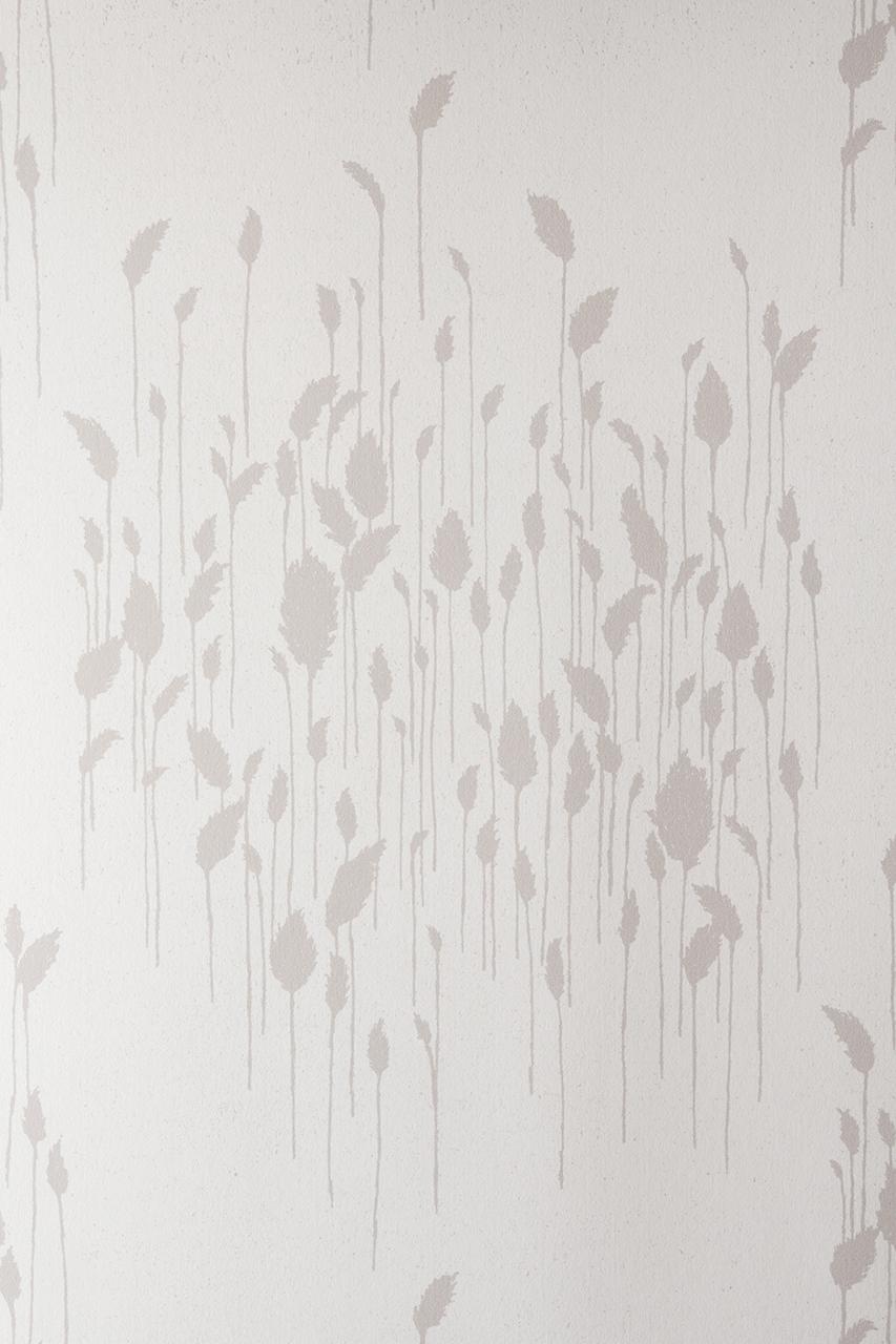 Phragmites Gray Wallpaper