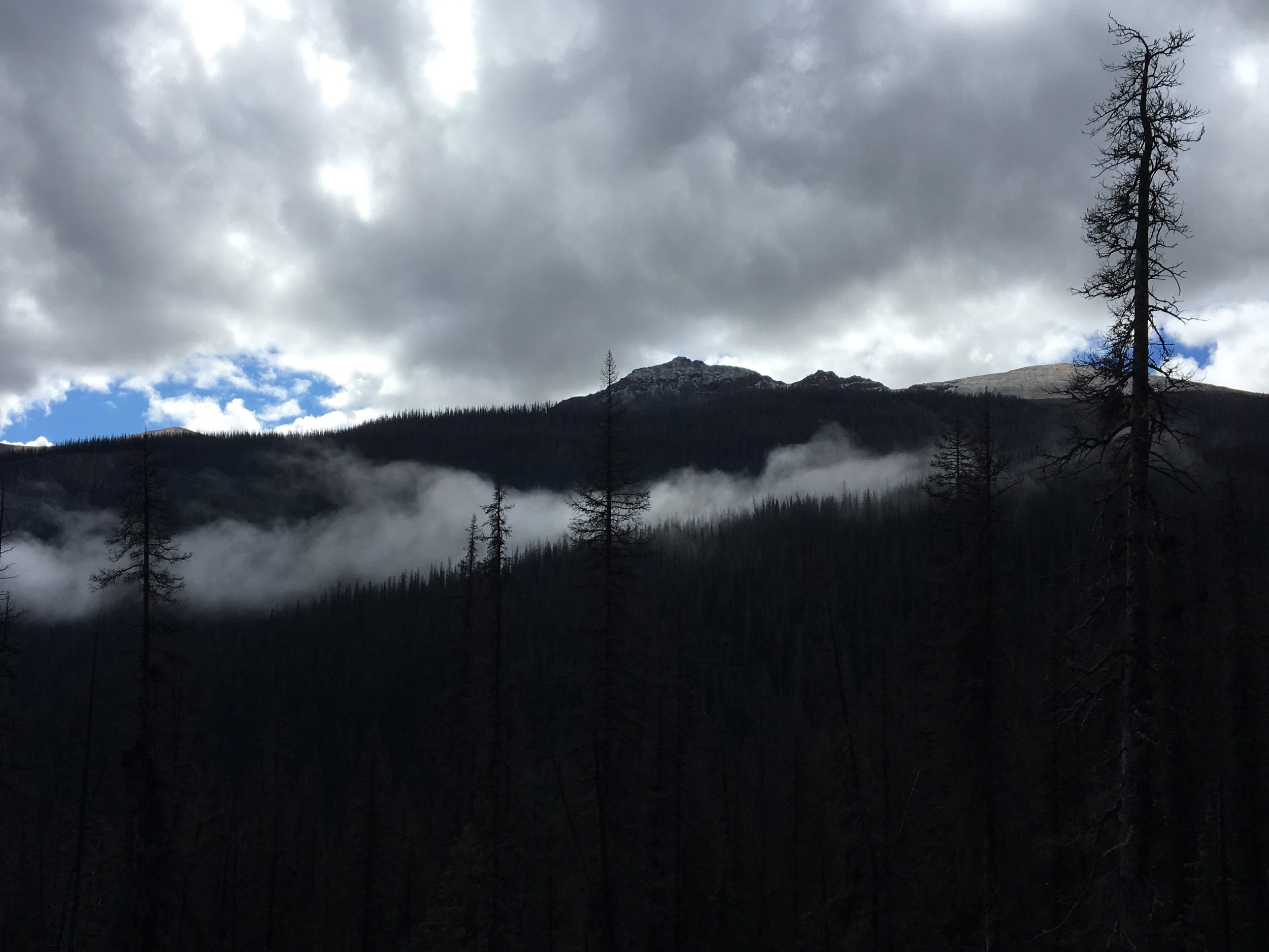 Photo taken at 7 AM on a backpacking excursion in Southwestern Colorado