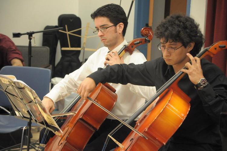 Domni cello.jpg