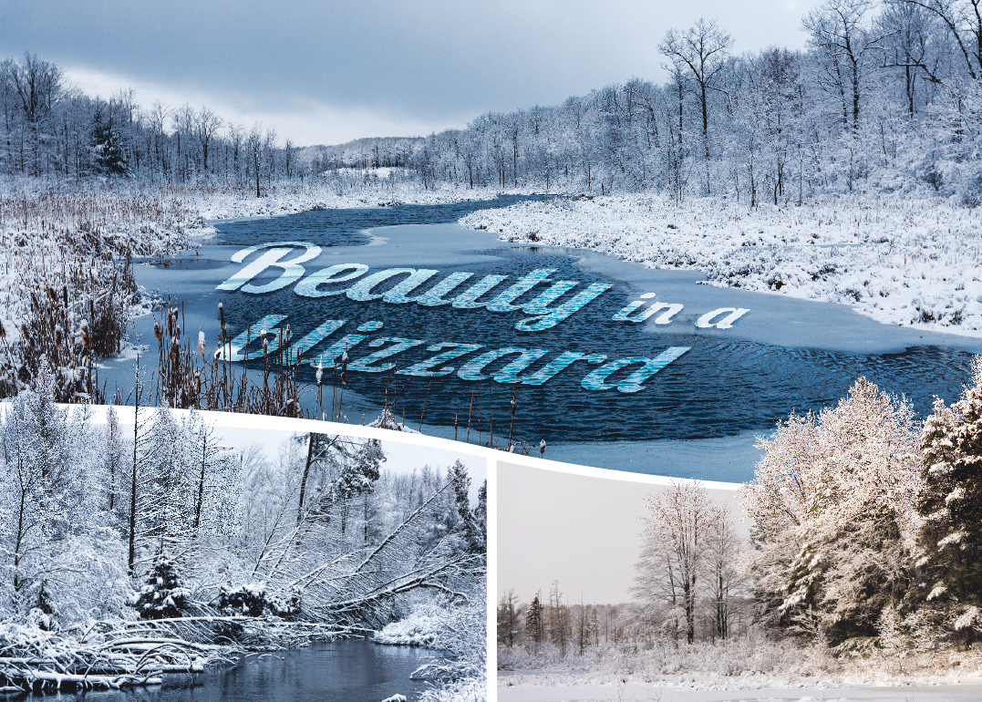 WINTER WONDERLAND: With recent snowfall much of the local region was blanketed with a beautiful layer of white. These conditions, while hazardous, are a photographer's paradise.