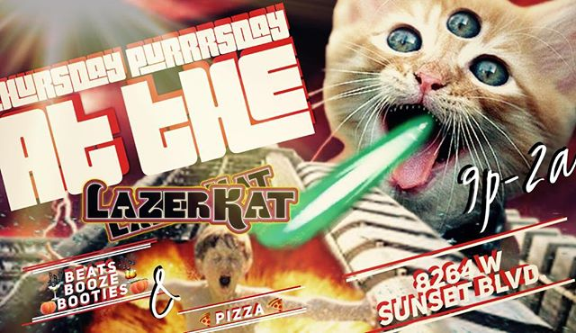 Thursday Purrrsday at the Lazer Kat #pizza #housemusic #housemusicallnightlong #housemusiclovers
