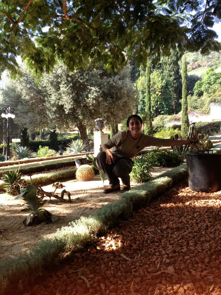 I spent the year between high school and college volunteering as a gardener at the Baha'i World Centre in Haifa, Israel. During my year, I planted flowers, raked lawns and paths, mowed hedges, shoveled dirt, and lived outside of my comfort zone with fellow volunteers from over seventy countries.