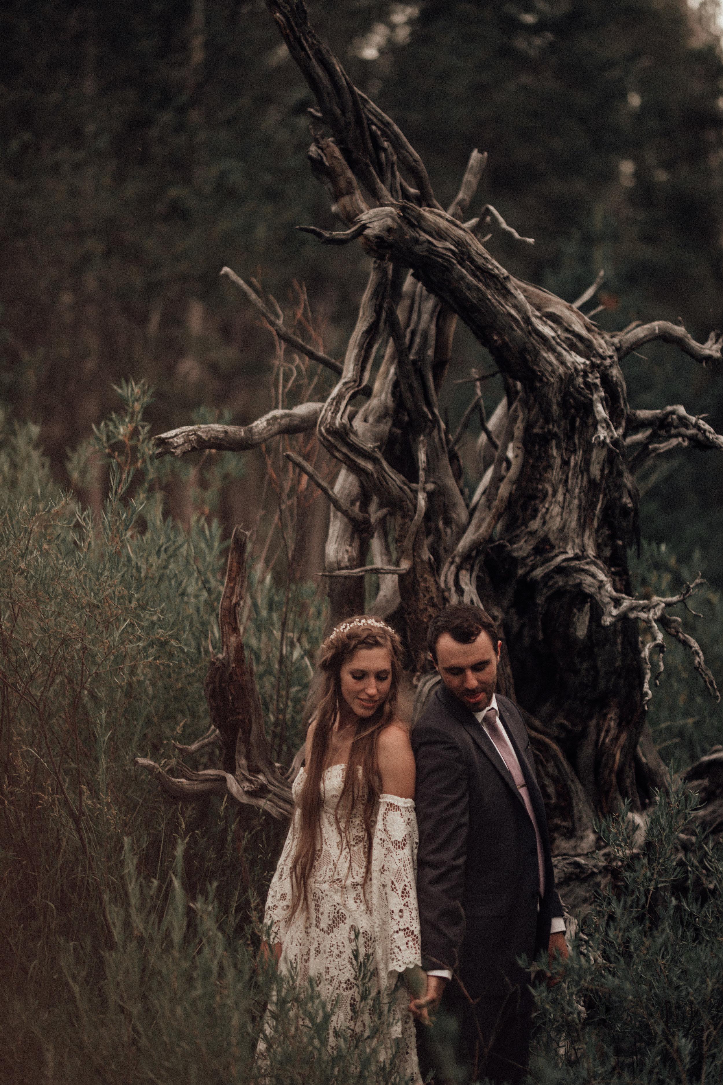 may-wedding-dancing-pines-sierraville-wedding-ca-danielle-kyle-junebug-photography-lake-tahoe-1-2566.jpg