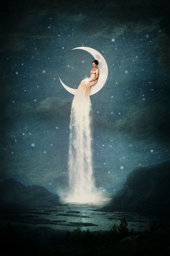 Image from:    https://neithonastrology.wordpress.com/2017/01/17/new-moon-in-aquarius-january-27-2017/