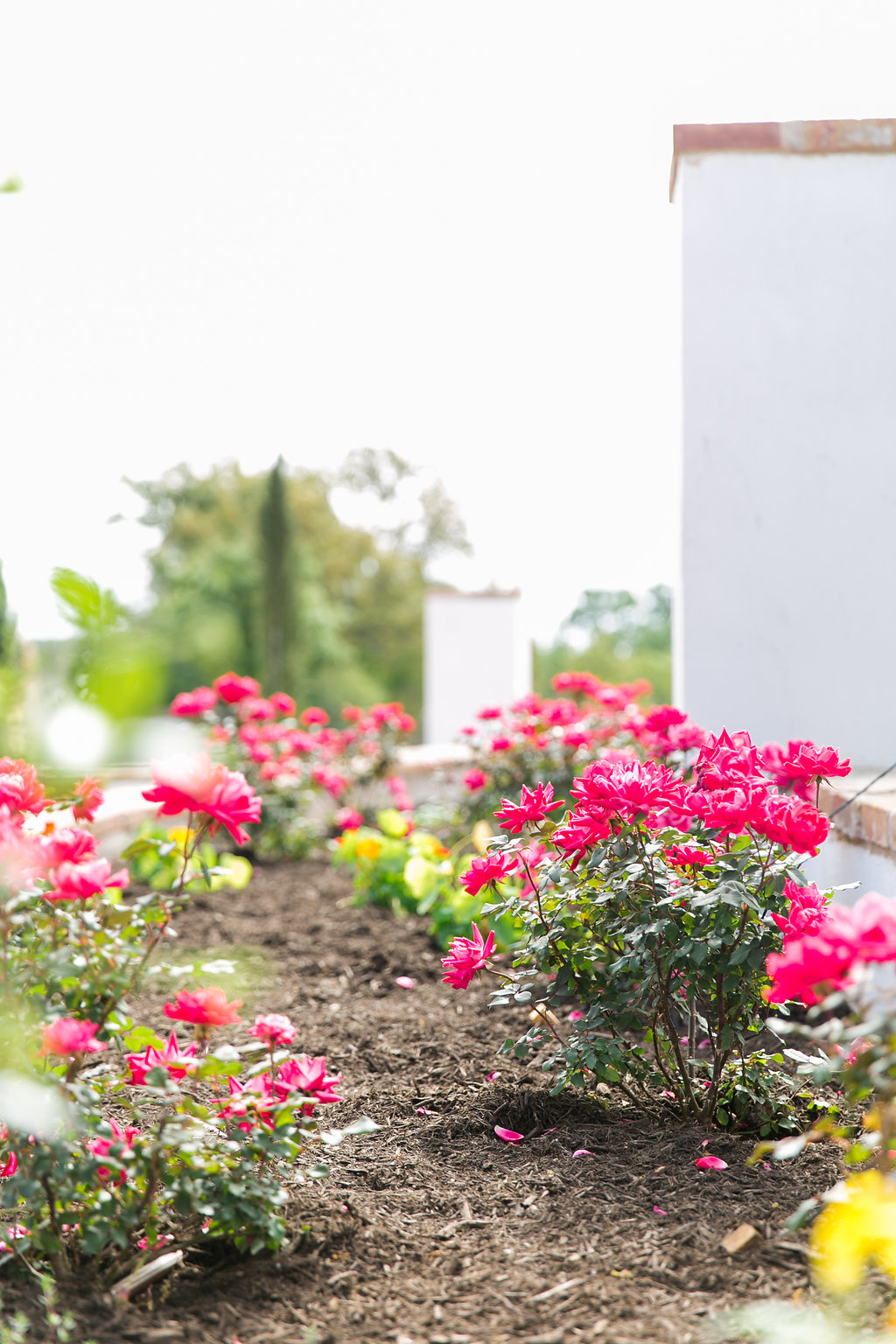 GardenGrove-0046.jpg
