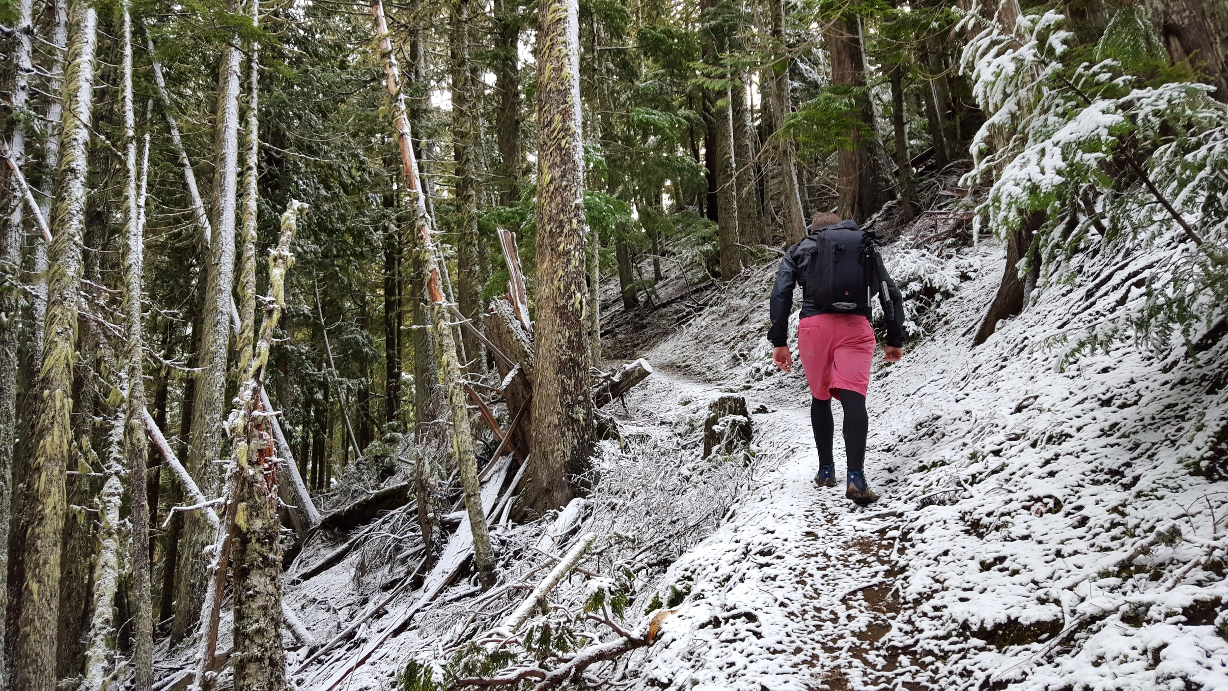 Hiking in the snow just before reaching the Pyramid Peak lookout.