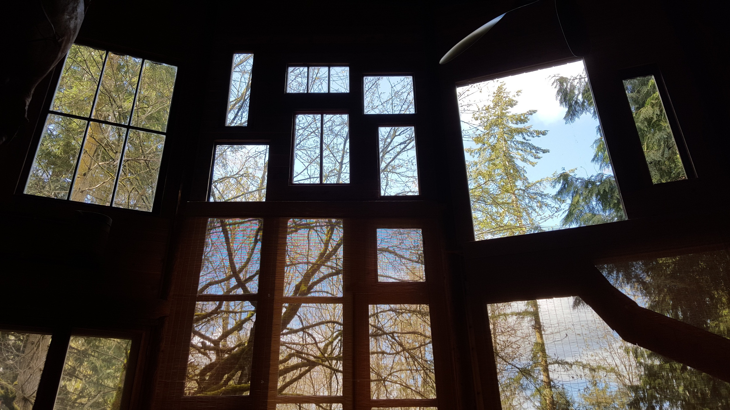 The large windows of the circular log cabin let in tons of light to its open floor plan.