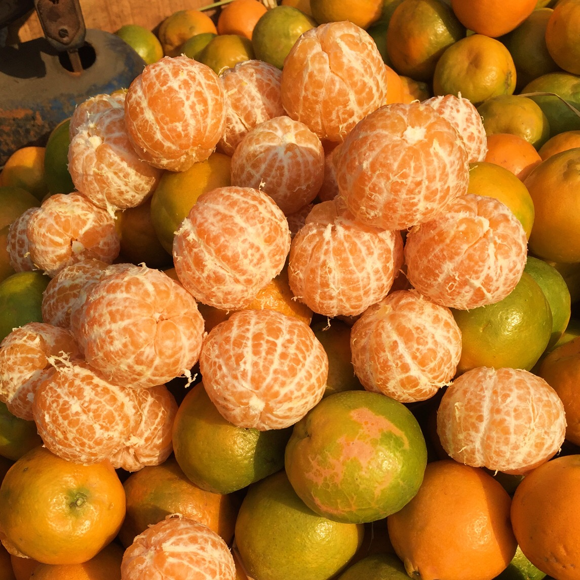 Oranges for sale in Oranges for sale in Old Delhi's Chandni Chowk market