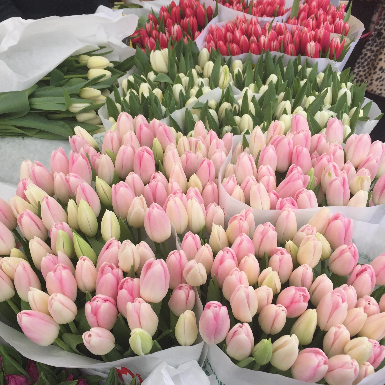 Tulips for sale in Amsterdam's Albert Cuypmarkt.