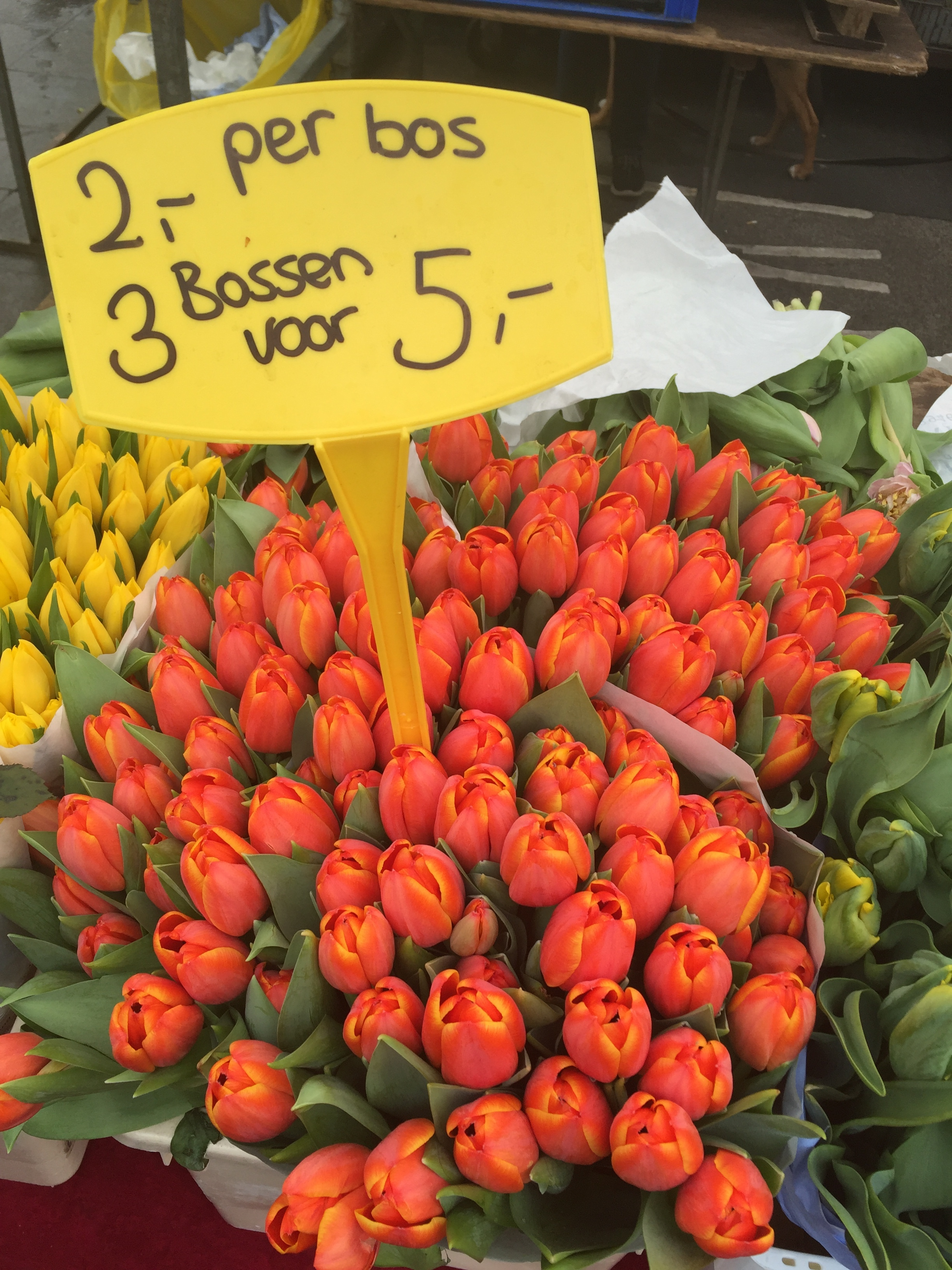 Tulips - 3 bunches for sale in Amsterdam's Albert Cuypmarkt.