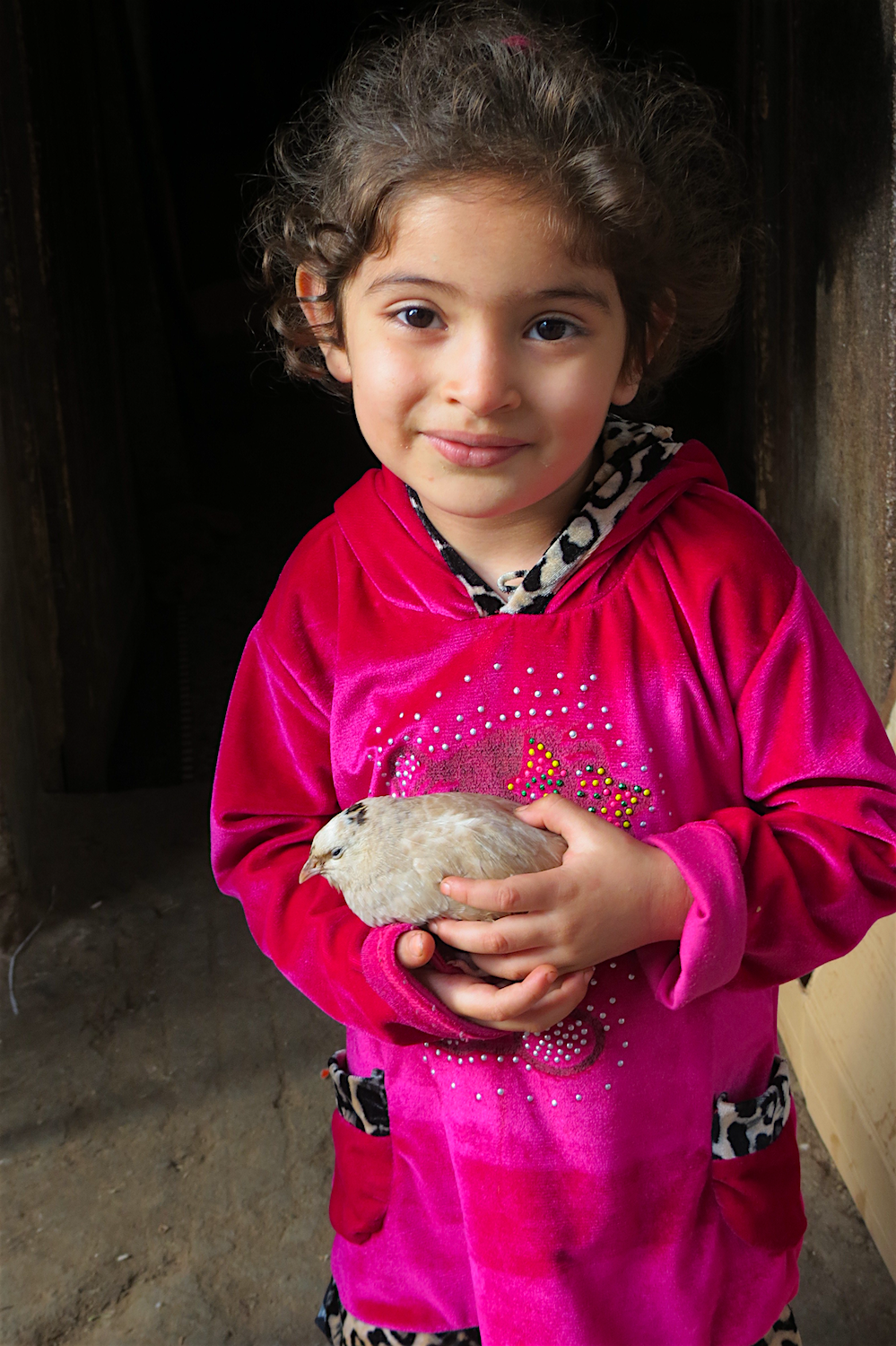 Moroccan girl with pigeon