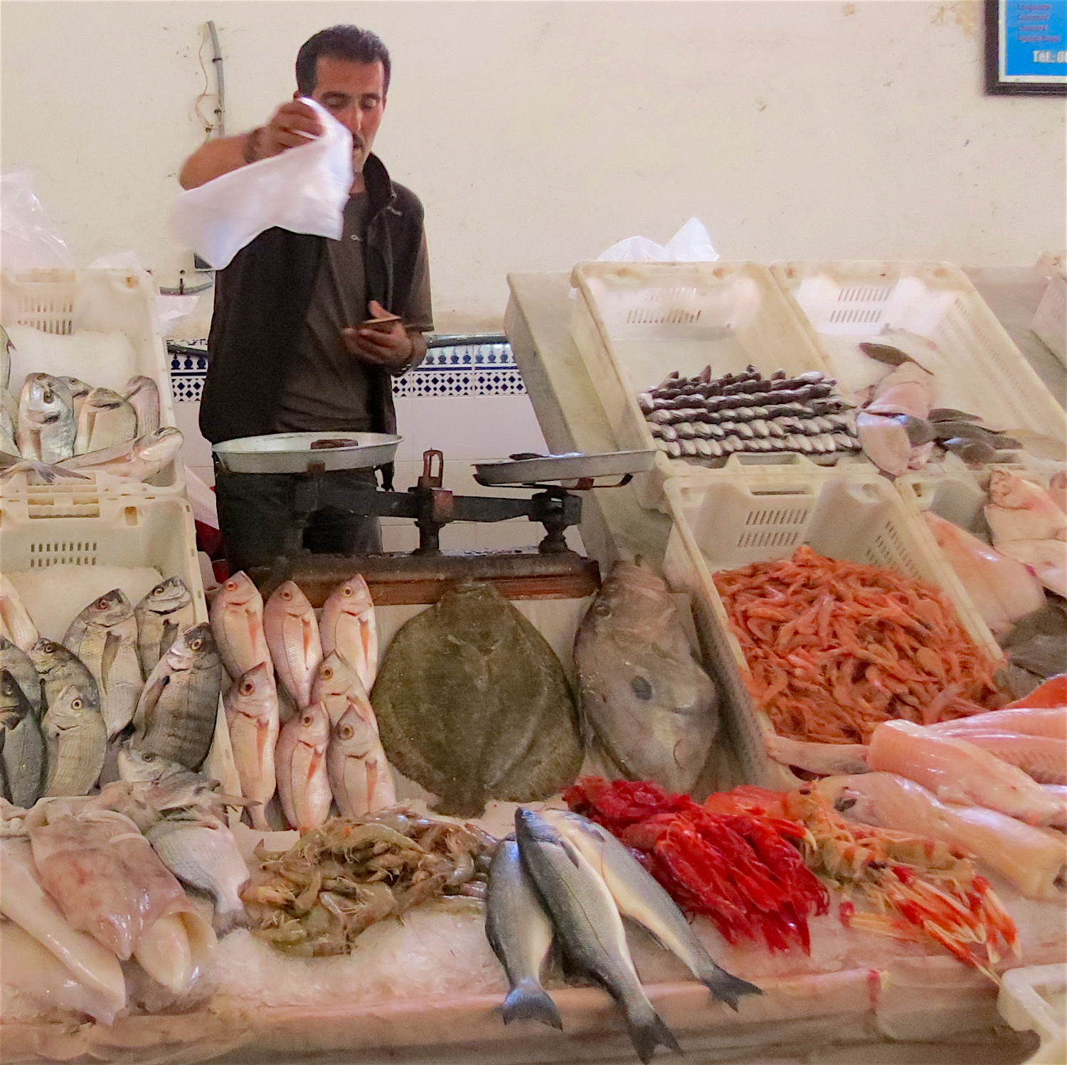Fish market at Casablanca's Marche Central