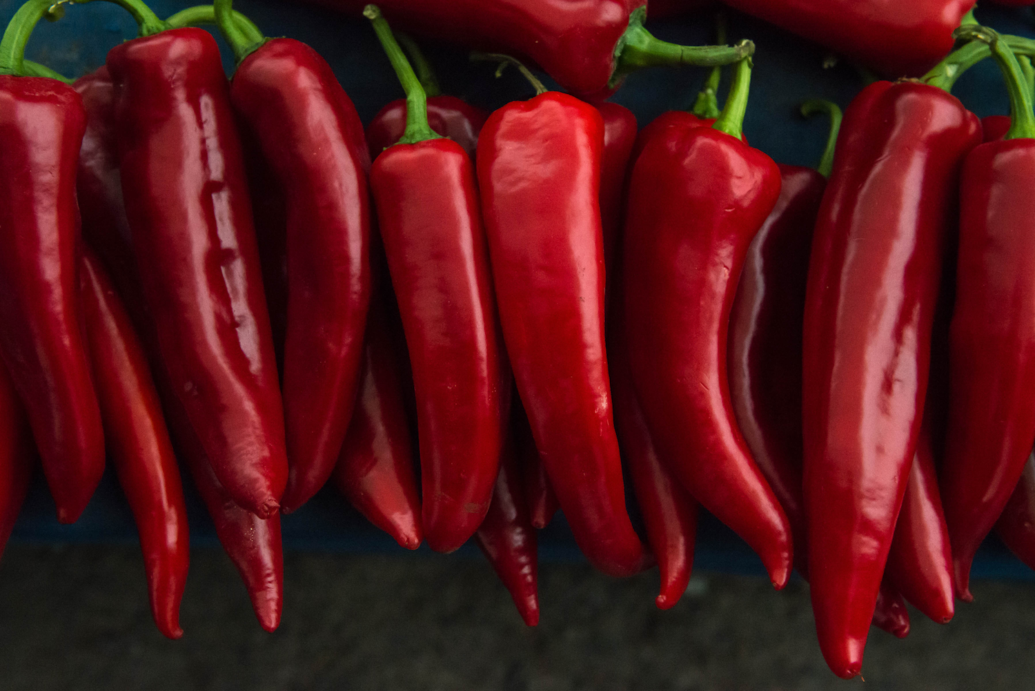 red chili peppers lined up like soldiers at Bakirkoy Market.png
