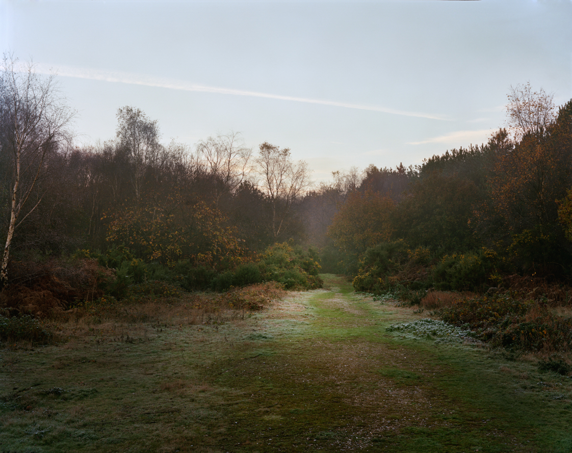 From the series  Sandlings