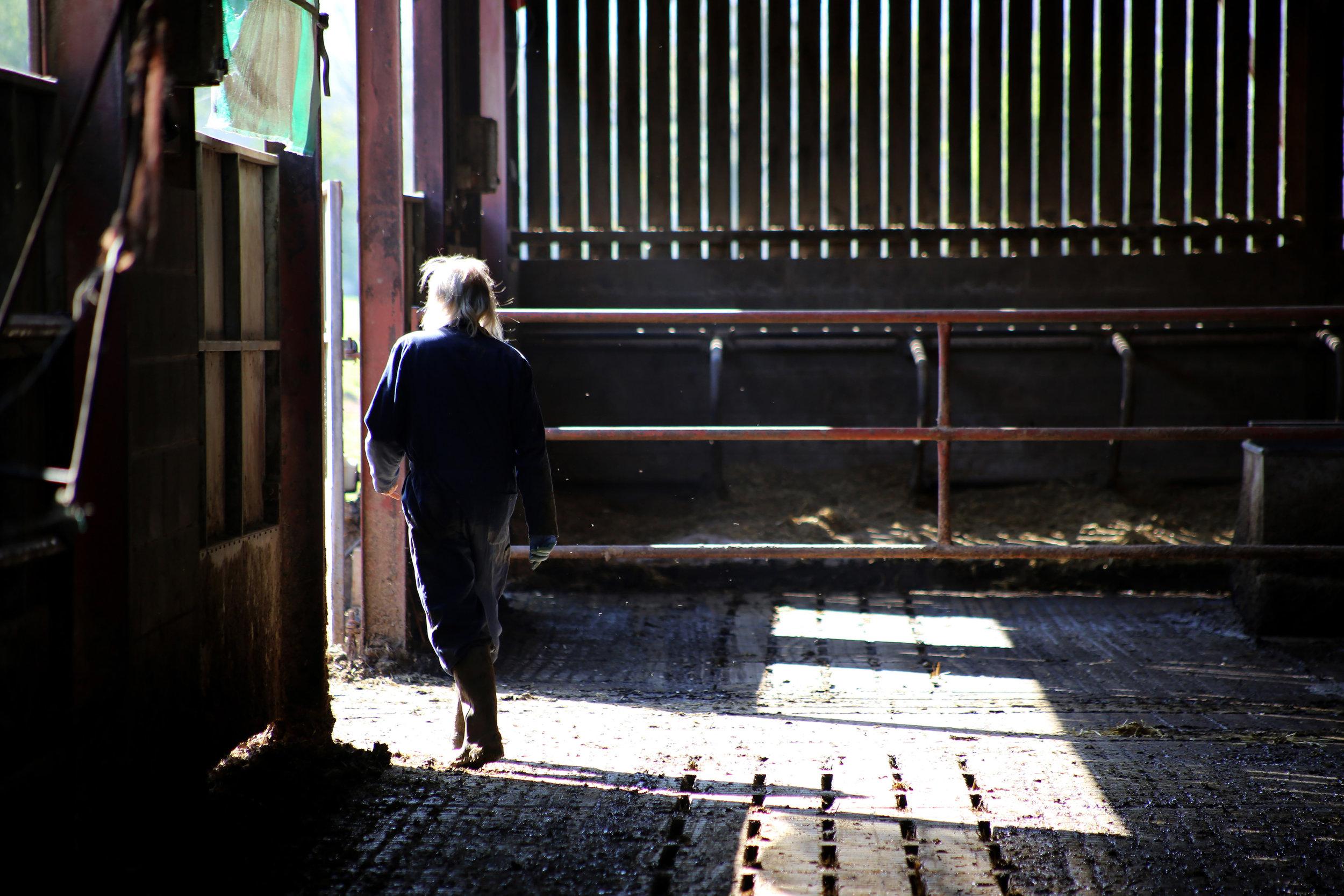 Farmer, Bosley Mill Farm, Gloucestershire