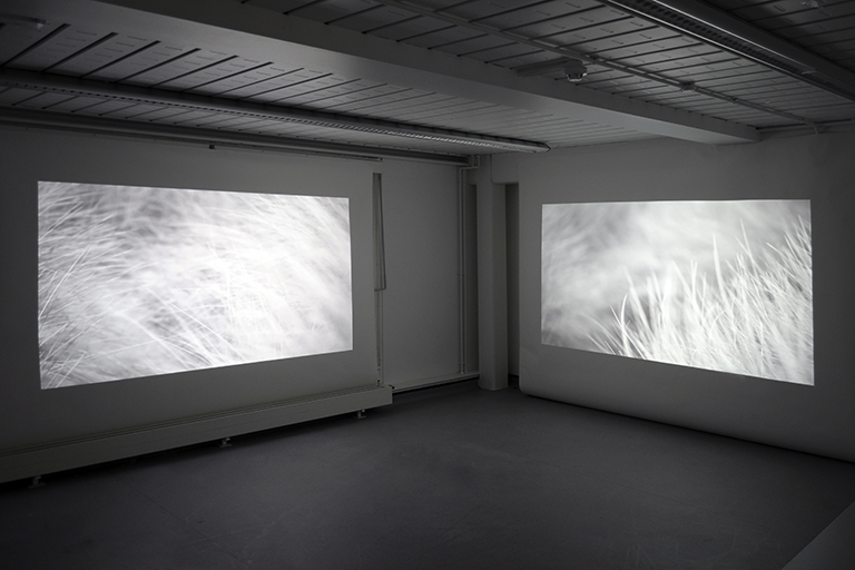 Tracing a line along a breath exhaled   installation image