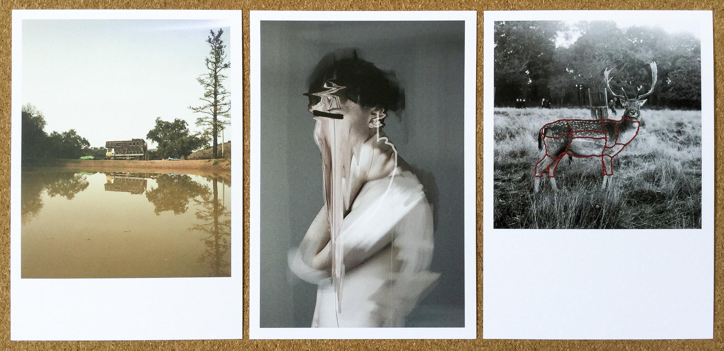 Ben Stewart , Nomad. Matthew Mottram, Gaze .  Harriet Foster-Thornton , Still-Hunting .