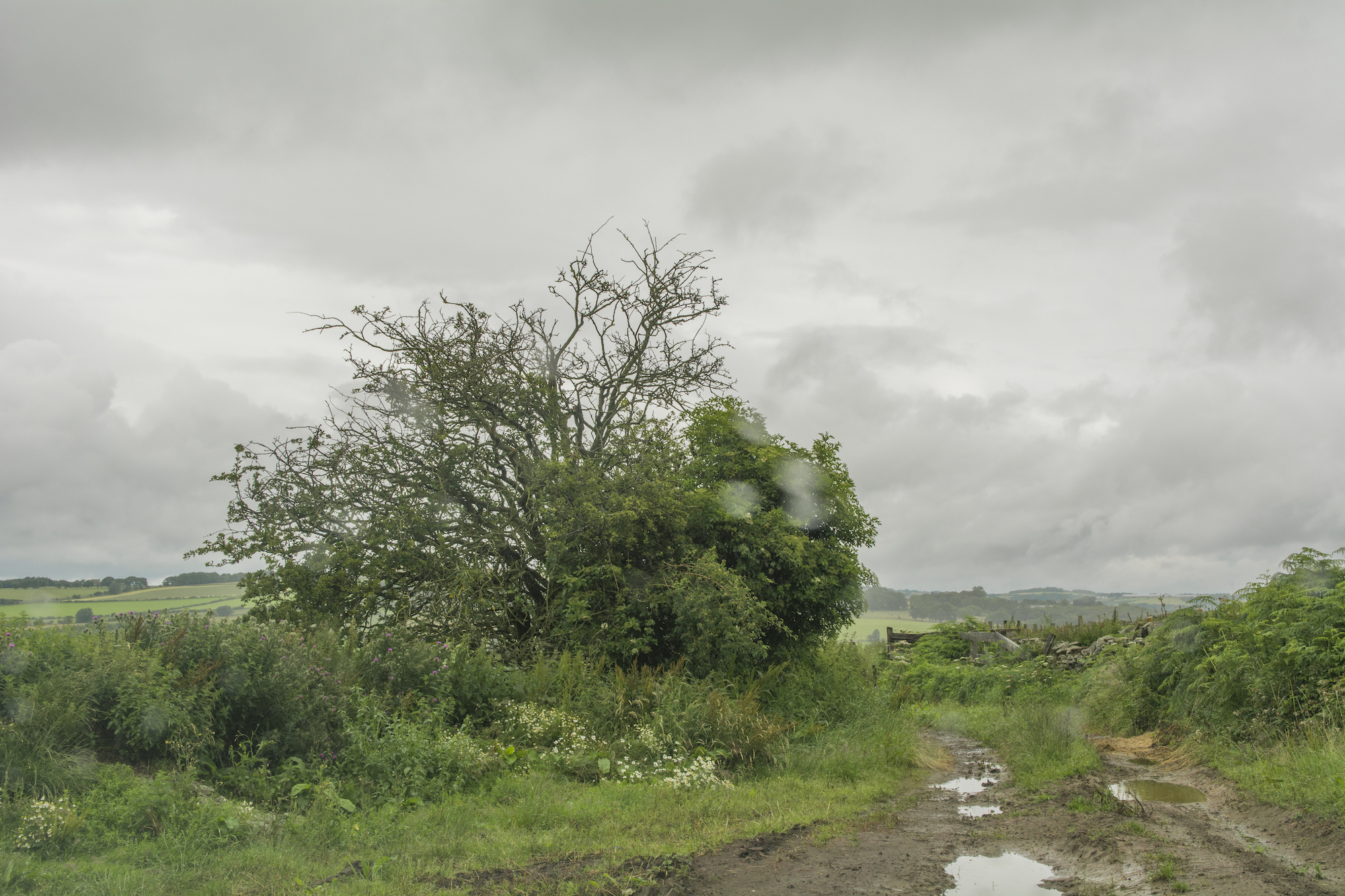 From the series  Whereness: The Landscape of Uncertainty