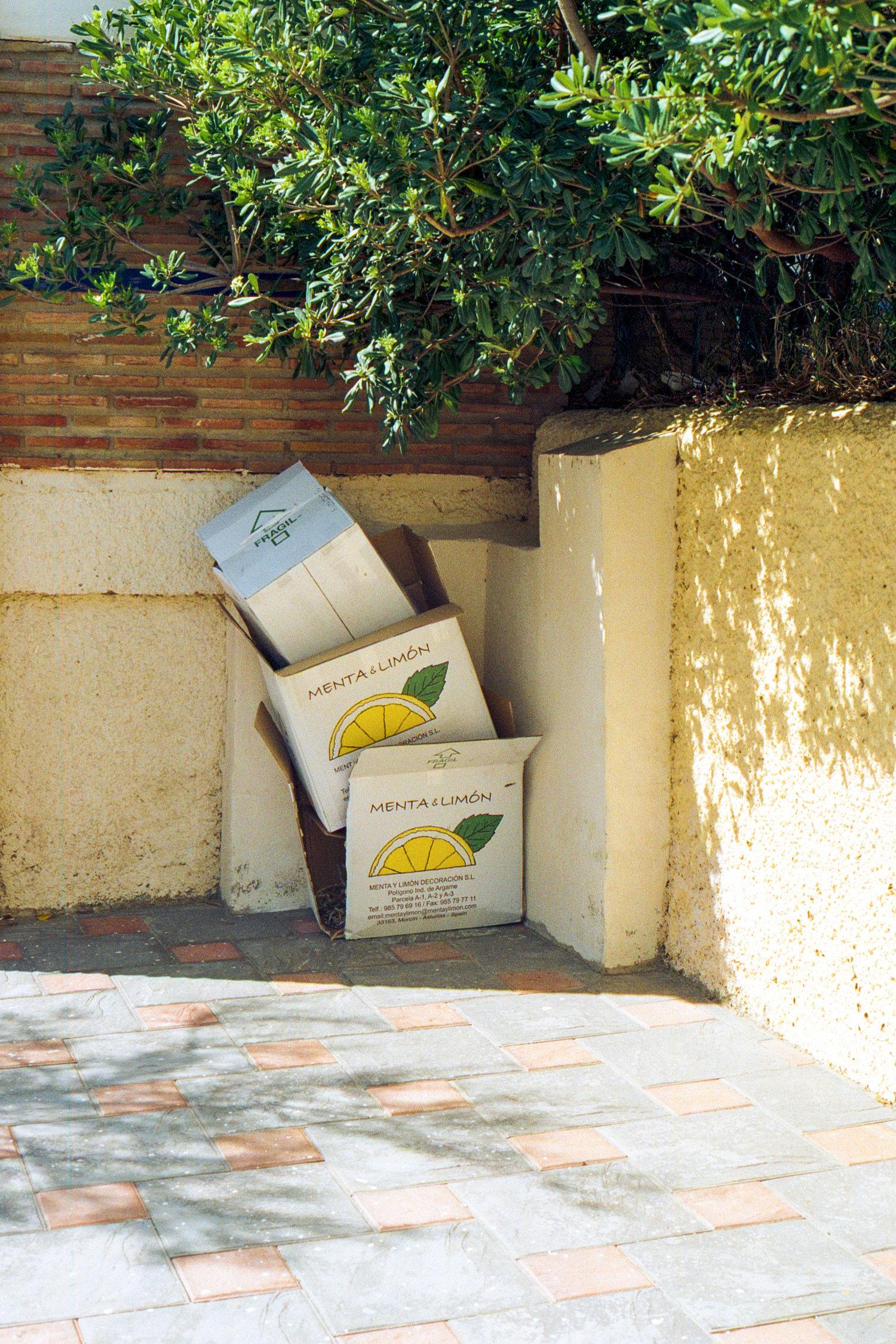 lemonbox.jpg